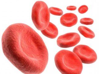 Какой должен быть гемоглобин у новорожденных детей